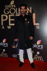 at Golden Petal Awards in Mumbai on 6th March 2016 (207)_56dd2e0992d86.JPG