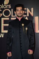 at Golden Petal Awards in Mumbai on 6th March 2016 (208)_56dd2e0a73bd6.JPG