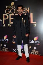at Golden Petal Awards in Mumbai on 6th March 2016 (209)_56dd2e0b6a131.JPG
