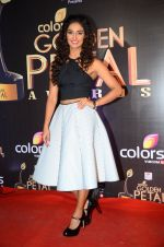 at Golden Petal Awards in Mumbai on 6th March 2016 (210)_56dd2e0c56bb5.JPG