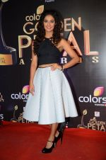 at Golden Petal Awards in Mumbai on 6th March 2016 (211)_56dd2e0d36c21.JPG