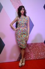 at Lakme Fashion Week Preview on 8th March 2016 (55)_56e00ba427466.JPG