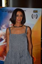 Achint Kaur at Zorawar film launch on 10th March 2016 (11)_56e26e287ce9a.JPG