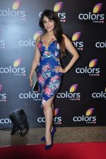 Aarti Chhabria at Colors red carpet on 12th March 2016 (53)_56e55222a40b9.JPG