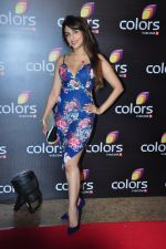Aarti Chhabria at Colors red carpet on 12th March 2016 (57)_56e55227af791.JPG