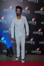 Aashish Chaudhary at Colors red carpet on 12th March 2016