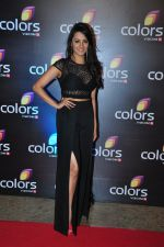 Anita Hassanandani at Colors red carpet on 12th March 2016 (205)_56e552a876dc2.JPG