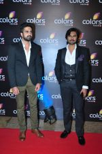 Gaurav Chopra at Colors red carpet on 12th March 2016 (257)_56e553659862e.JPG