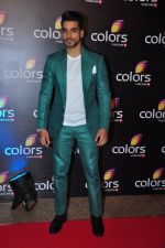 Gautam Gulati at Colors red carpet on 12th March 2016 (72)_56e5536fc97cb.JPG