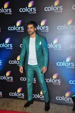 Gautam Gulati at Colors red carpet on 12th March 2016