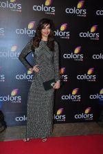 Karishma Tanna at Colors red carpet on 12th March 2016