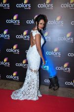 Kashmira Shah at Colors red carpet on 12th March 2016 (271)_56e553dfee947.JPG
