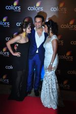 Kashmira Shah, Krishna Abhishek at Colors red carpet on 12th March 2016 (267)_56e553f15c2f1.JPG