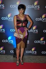 Mandira Bedi at Colors red carpet on 12th March 2016