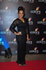 Meghna Naidu at Colors red carpet on 12th March 2016 (233)_56e5543c50315.JPG