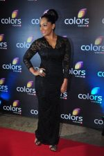 Meghna Naidu at Colors red carpet on 12th March 2016 (234)_56e5543d63486.JPG