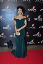 Mouni Roy at Colors red carpet on 12th March 2016 (298)_56e554567b384.JPG