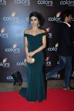 Mouni Roy at Colors red carpet on 12th March 2016