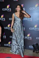 Parvathy Omanakuttan at Colors red carpet on 12th March 2016