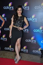 Ragini Khanna at Colors red carpet on 12th March 2016 (186)_56e5548f54b9d.JPG
