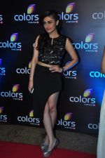 Ragini Khanna at Colors red carpet on 12th March 2016 (187)_56e554903d794.JPG
