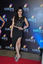 Ragini Khanna at Colors red carpet on 12th March 2016 (188)_56e554911c3d3.JPG