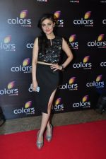 Ragini Khanna at Colors red carpet on 12th March 2016 (193)_56e5549245f5f.JPG