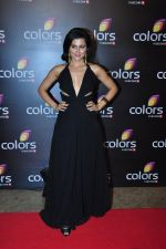 Riddhi Dogra at Colors red carpet on 12th March 2016 (325)_56e554cf94e2a.JPG