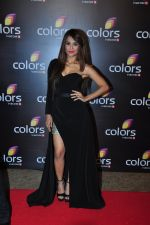 Sana Saeed at Colors red carpet on 12th March 2016 (301)_56e5553727f72.JPG