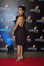 Sophie Chaudhary at Colors red carpet on 12th March 2016 (156)_56e555845bef3.JPG
