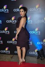 Sophie Chaudhary at Colors red carpet on 12th March 2016 (157)_56e5558591a0a.JPG