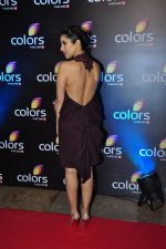 Sophie Chaudhary at Colors red carpet on 12th March 2016