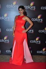 Tanisha Mukherjee at Colors red carpet on 12th March 2016 (296)_56e555d45b5d1.JPG