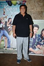 David Dhawan at Kapoor N Sons screening on 15th March 2016 (54)_56e9751e1f233.JPG