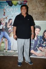 David Dhawan at Kapoor N Sons screening on 15th March 2016 (55)_56e9751fee89f.JPG