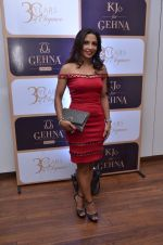 at Gehna 30 years anniversary on 15th March 2016