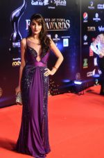 Nora Fatehi at TOIFA Red Carpet 18 March - Dubai International Stadium, Dubai Sports City