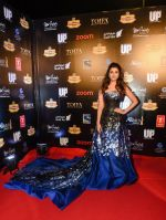 Parineeti Chopra at TOIFA Red Carpet 18 March - Dubai International Stadium, Dubai Sports City