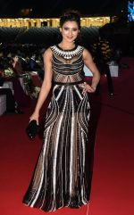 Urvashi Rautela at TOIFA Red Carpet 18 March - Dubai International Stadium, Dubai Sports City