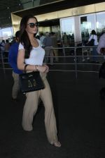Amy Jackson snapped at airport on 20th March 2016