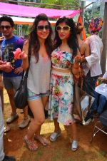 at Meet Brothers Holi Bash on 24th March 2016 (35)_56f51ab39abff.JPG
