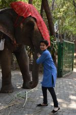 Neel Sethi aka Mowgli at Jungle Book press meet on 28th March 2016 (22)_56fa73ed07831.JPG