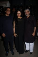 Padmini Kolhapure at bhansali party for national award declare on 28th March 2016 (16)_56fa79008550f.JPG