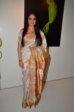 Gracy Singh at art event on 31st March 2016 (10)_56fe18c3009cd.JPG