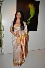 Gracy Singh at art event on 31st March 2016 (8)_56fe18c08a490.JPG