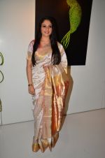 Gracy Singh at art event on 31st March 2016 (9)_56fe18c195a09.JPG