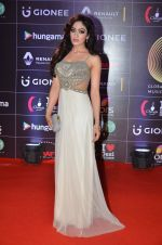 Khushali Kumar at GIMA Awards 2016 on 6th April 2016 (162)_5706424fa1e08.JPG