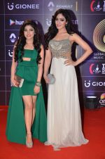 Khushali Kumar, Tulsi Kumar at GIMA Awards 2016 on 6th April 2016 (178)_570643bd6b102.JPG