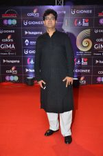 Parsoon Joshi at GIMA Awards 2016 on 6th April 2016 (249)_57064296ac226.JPG