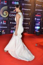 Sana KHan at GIMA Awards 2016 on 6th April 2016